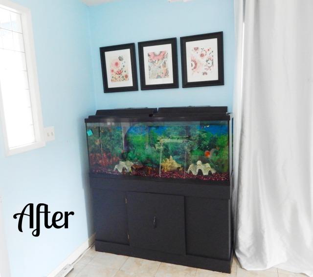 aquariumafter