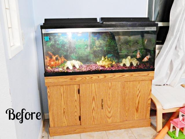 aquariumbefore
